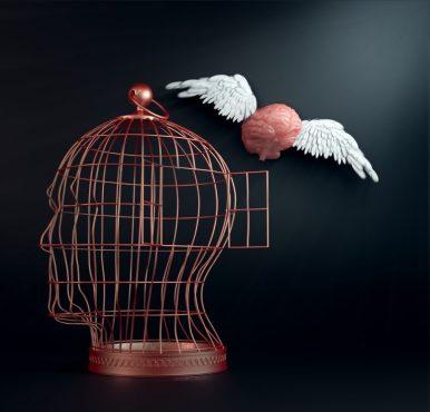 head-brain-cage-768x737
